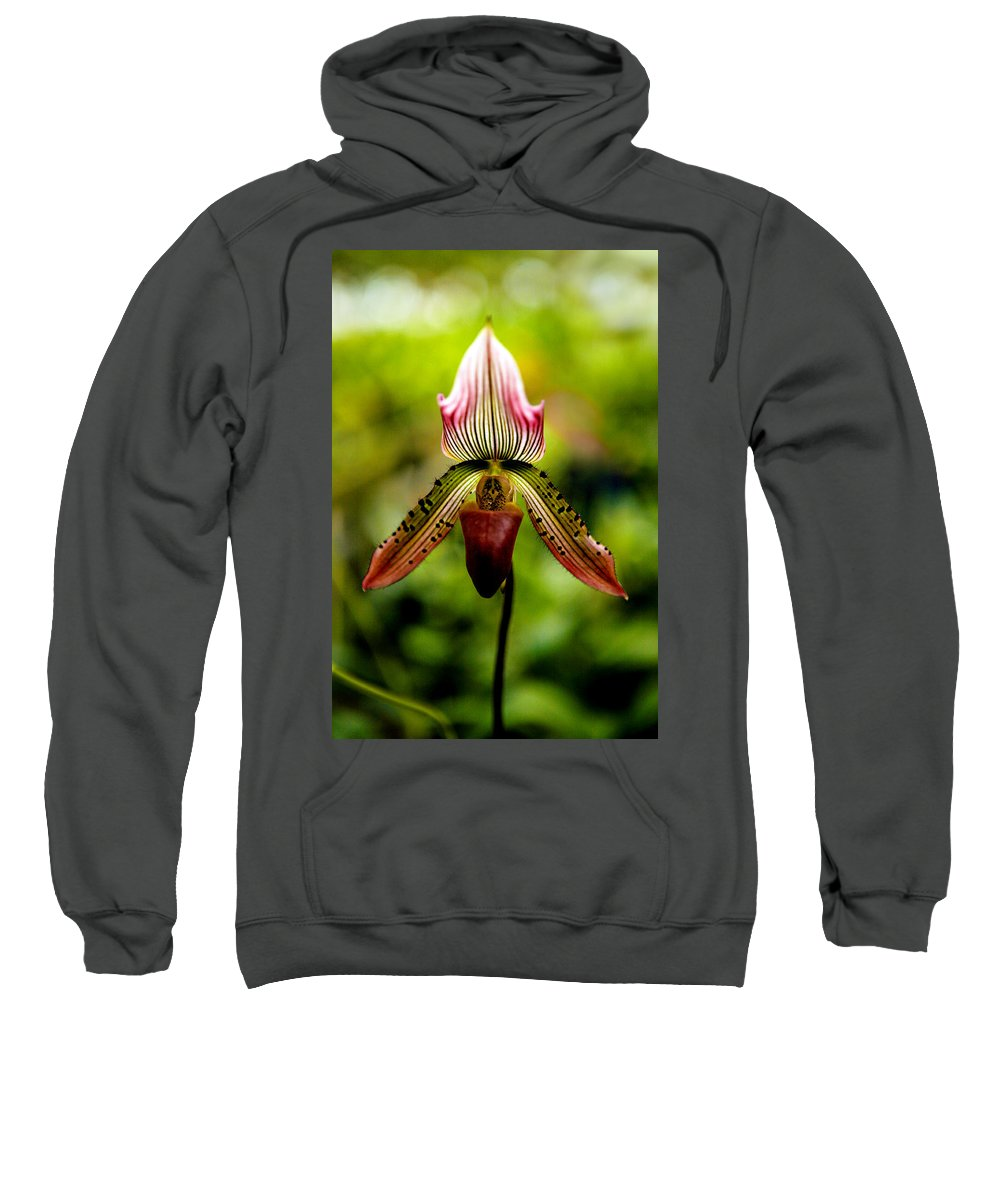 Orchid Sweatshirt featuring the photograph Singular Beauty by Marilyn Hunt