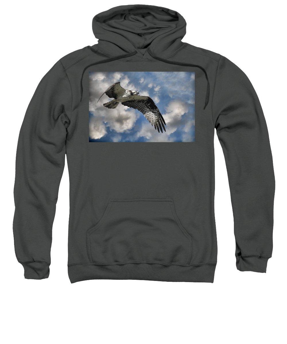 Osprey Sweatshirt featuring the photograph Sky Pilot by Steve McKinzie