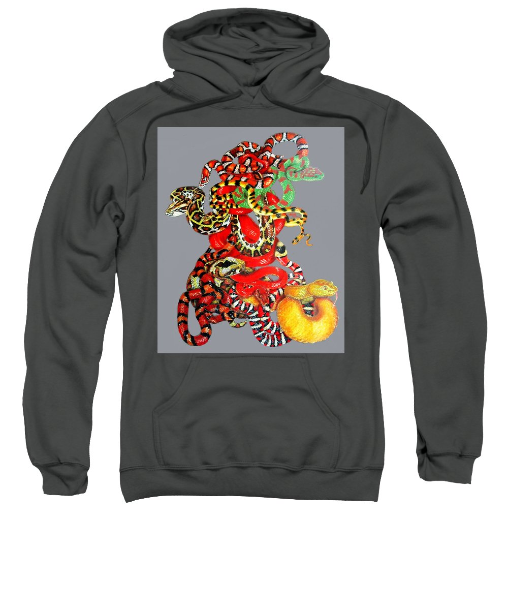 Reptile Sweatshirt featuring the drawing Slither by Barbara Keith