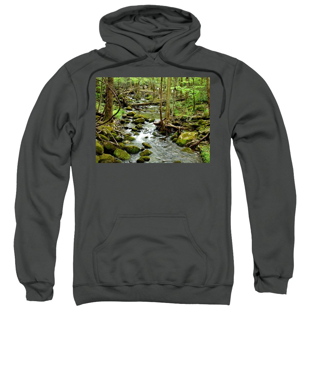 Smoky Mountains Sweatshirt featuring the photograph Smoky Mountain Stream 1 by Nancy Mueller