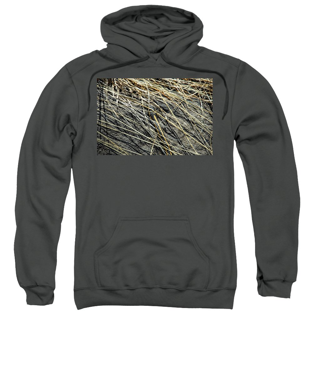 Snake Sweatshirt featuring the photograph Snake In The Grass by Donna Blackhall