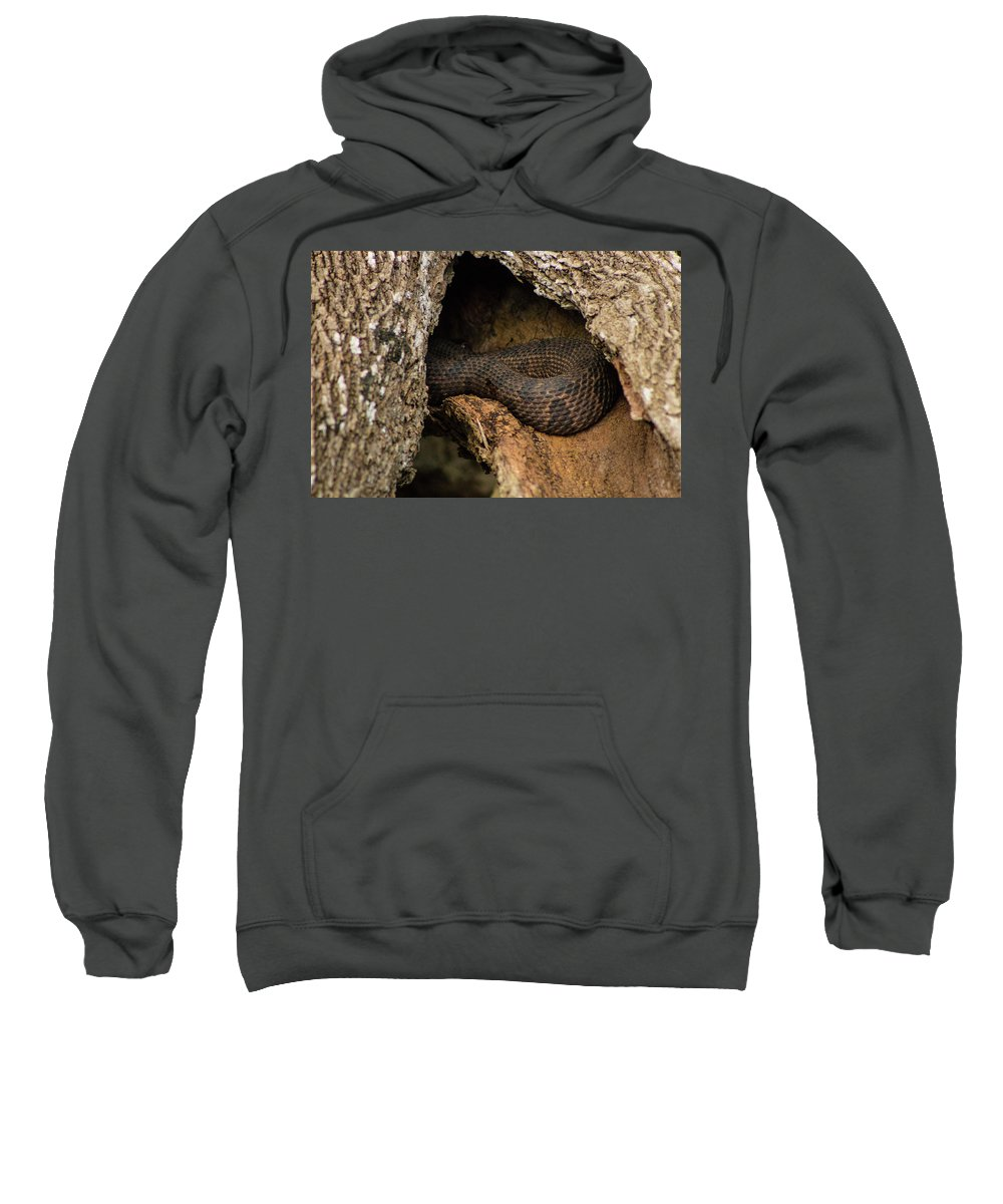 Nature Sweatshirt featuring the photograph Snake by Katarina Muyres