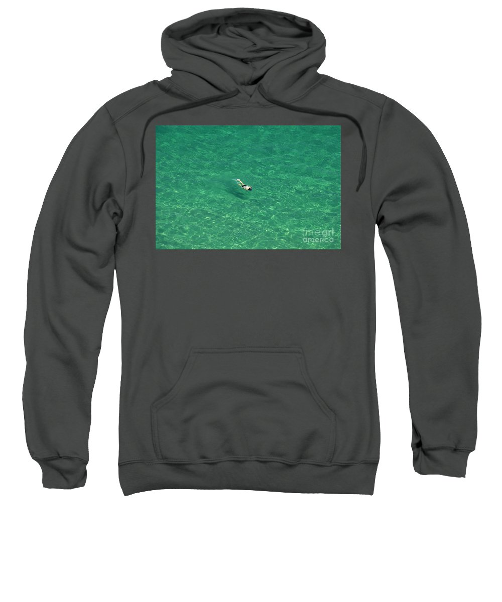 Snorkeling Sweatshirt featuring the photograph Snorkeling by David Lee Thompson