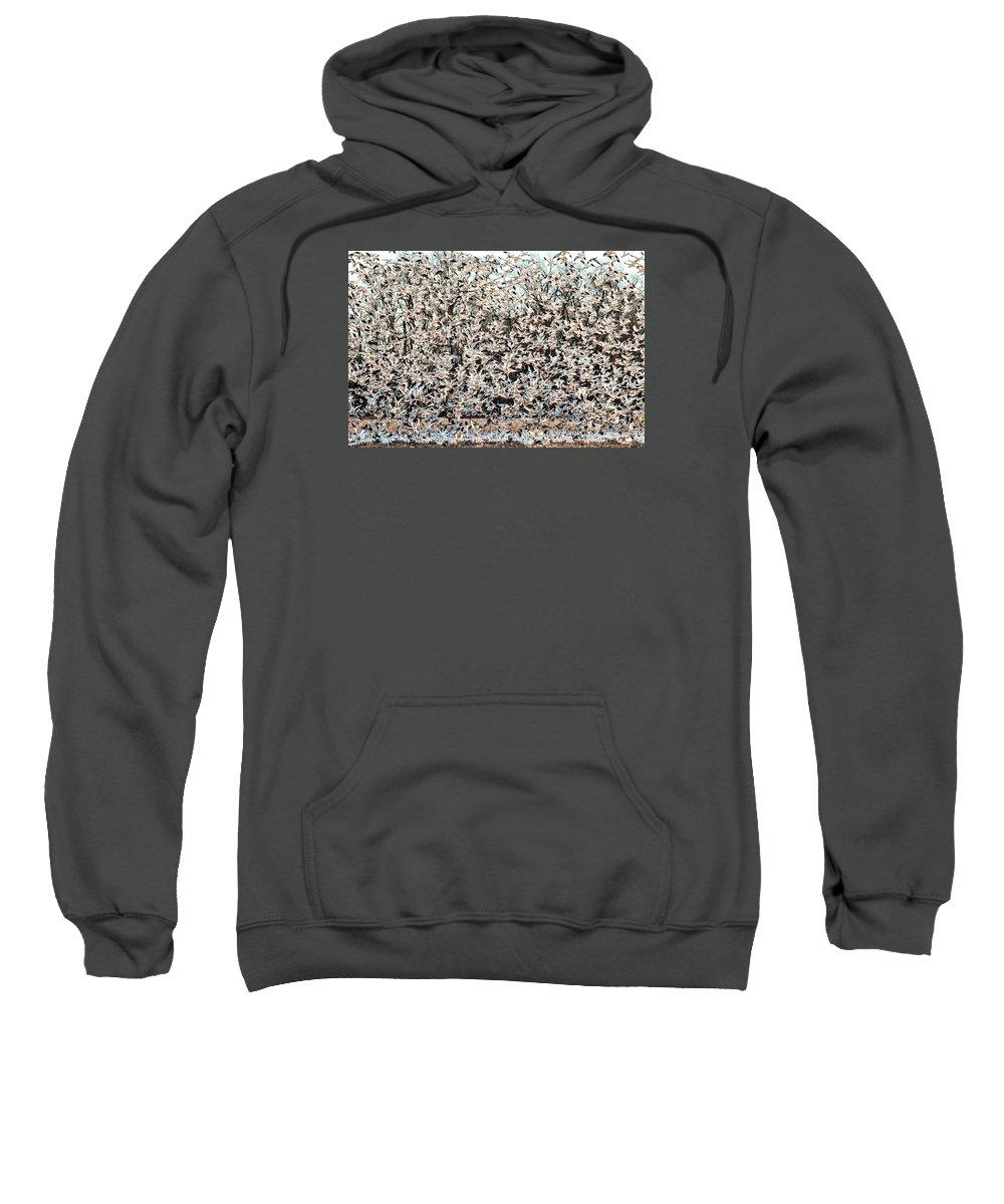 Birds Sweatshirt featuring the photograph Snow Geese Rising by Neva Kittrell-Scheve
