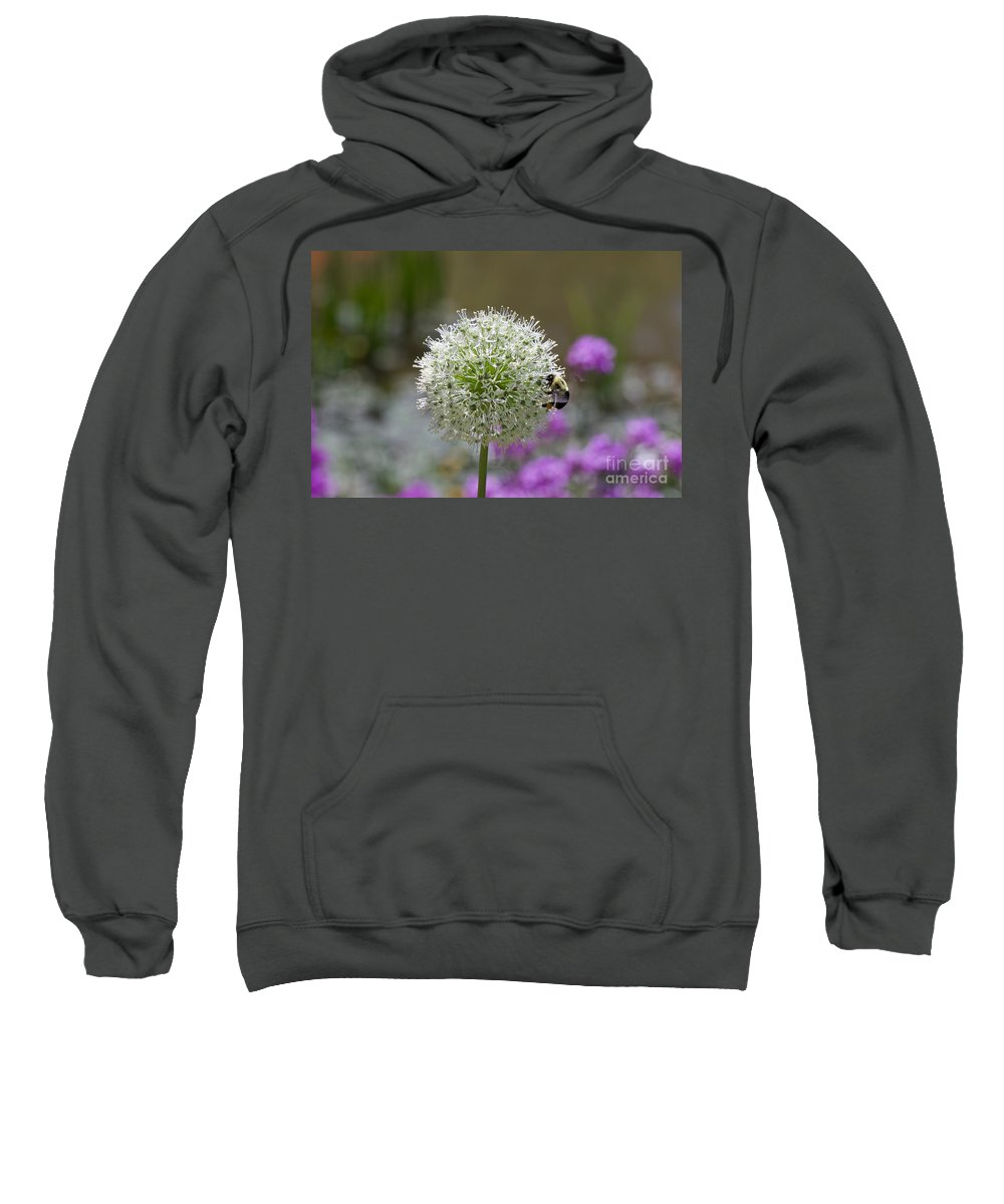 Snowball Sweatshirt featuring the photograph Snowball And The Bumblebee by John Franke