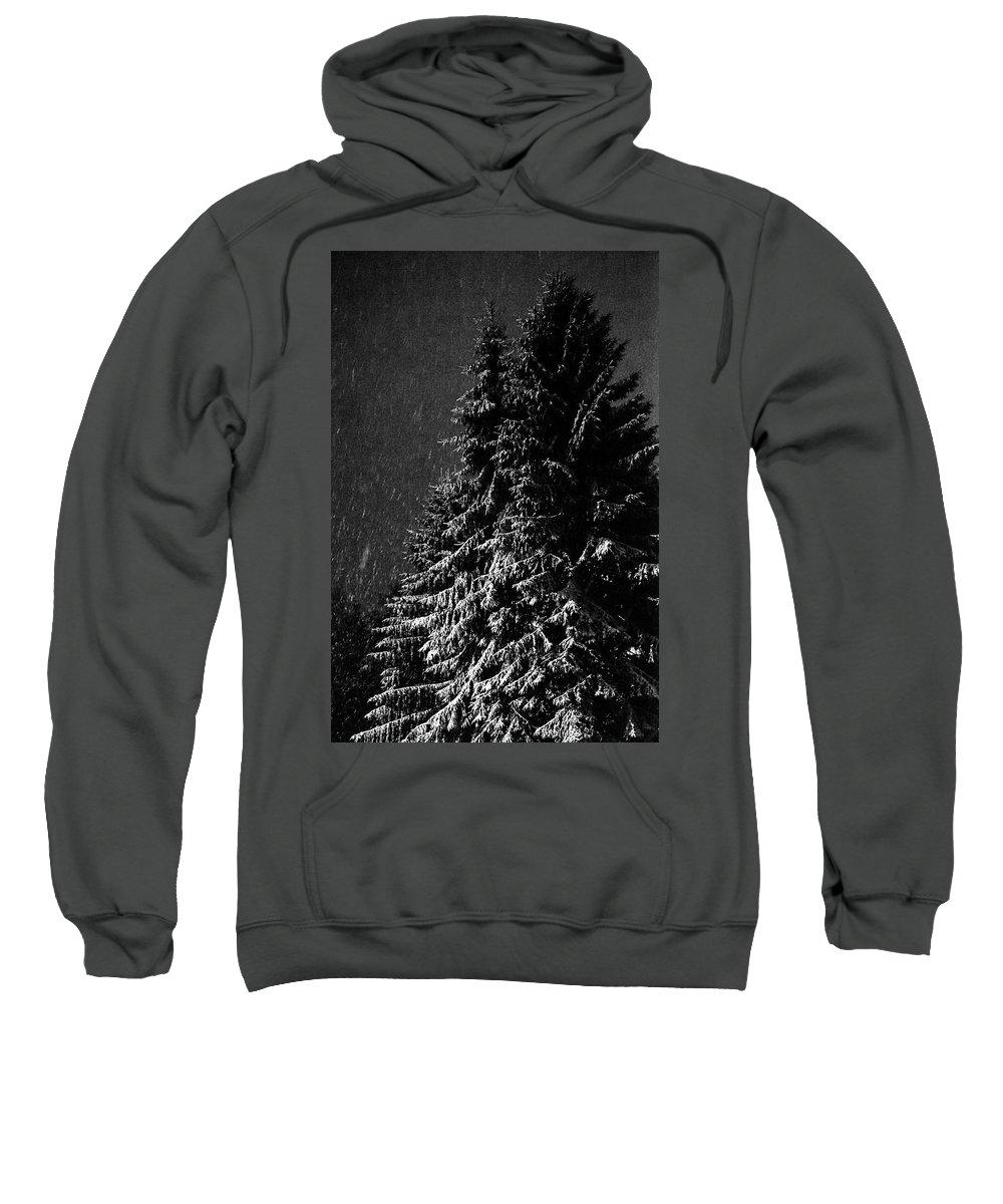 Spruce Sweatshirt featuring the digital art Snowfall by Henrik Kuosa
