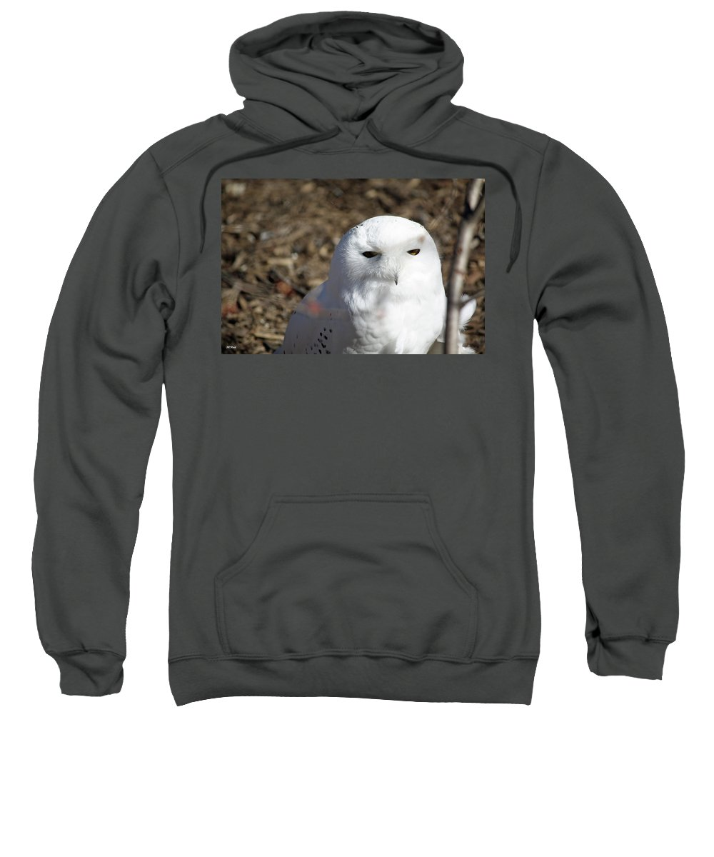 Maryland Sweatshirt featuring the photograph Snowy Owl by Ronald Reid