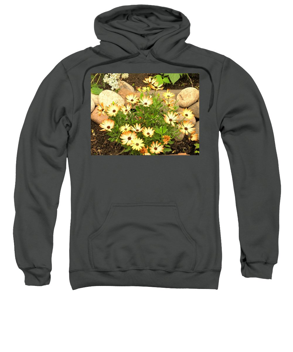 Flowers Sweatshirt featuring the photograph Soft by Ian MacDonald