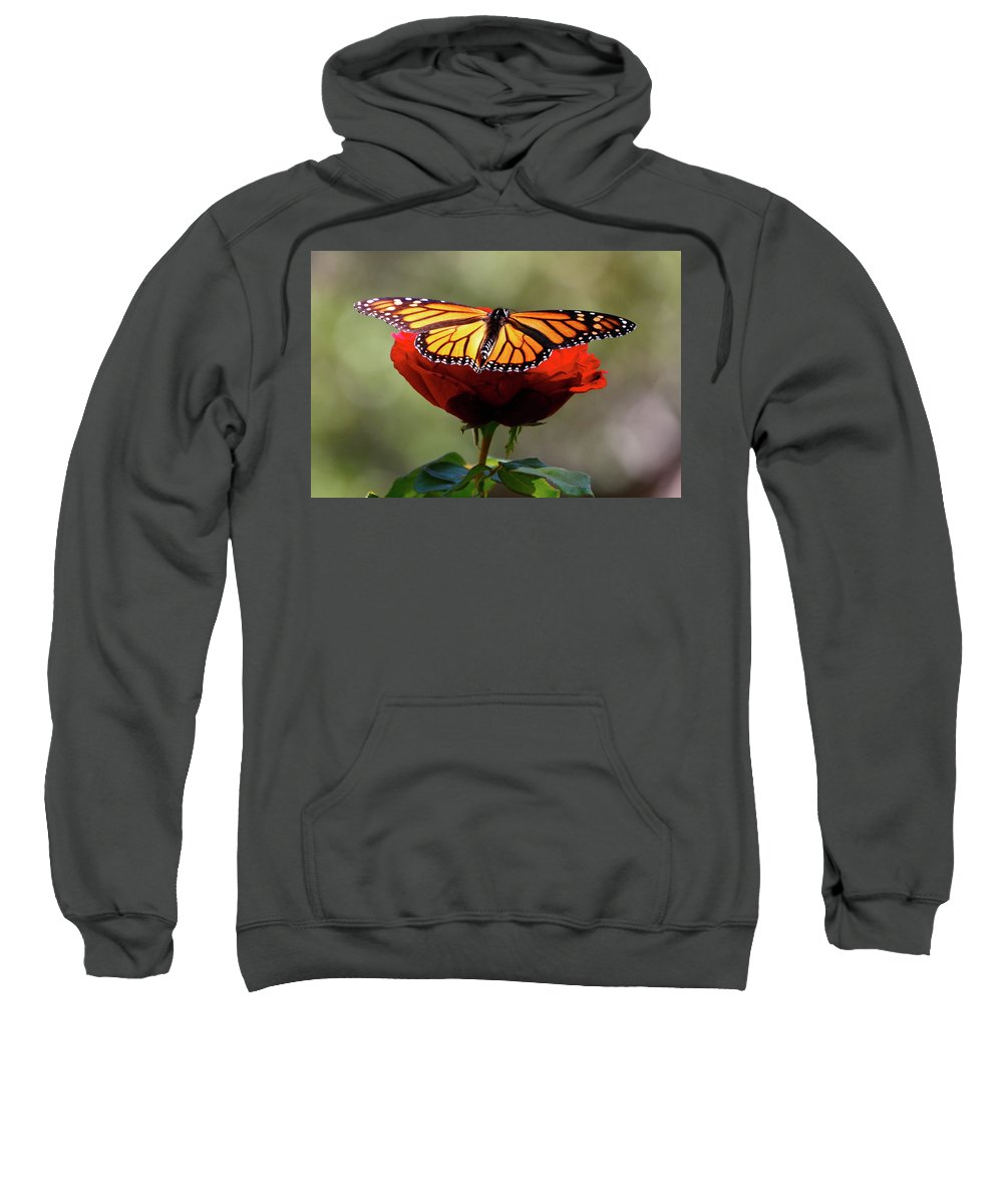 Monarch Butterfly Sweatshirt featuring the photograph Soft Landing by Debbie Karnes