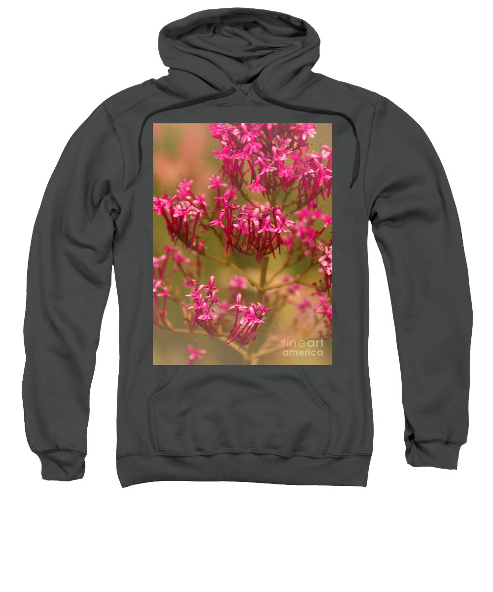 Flower Sweatshirt featuring the photograph Soft Pirouette by Linda Shafer