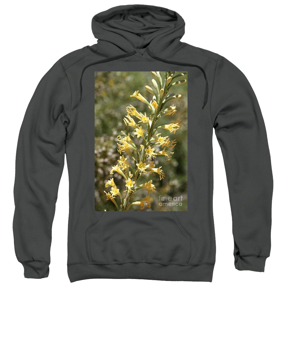 Yellow Sweatshirt featuring the photograph Soft Yellow Desert Flowers by Carol Groenen