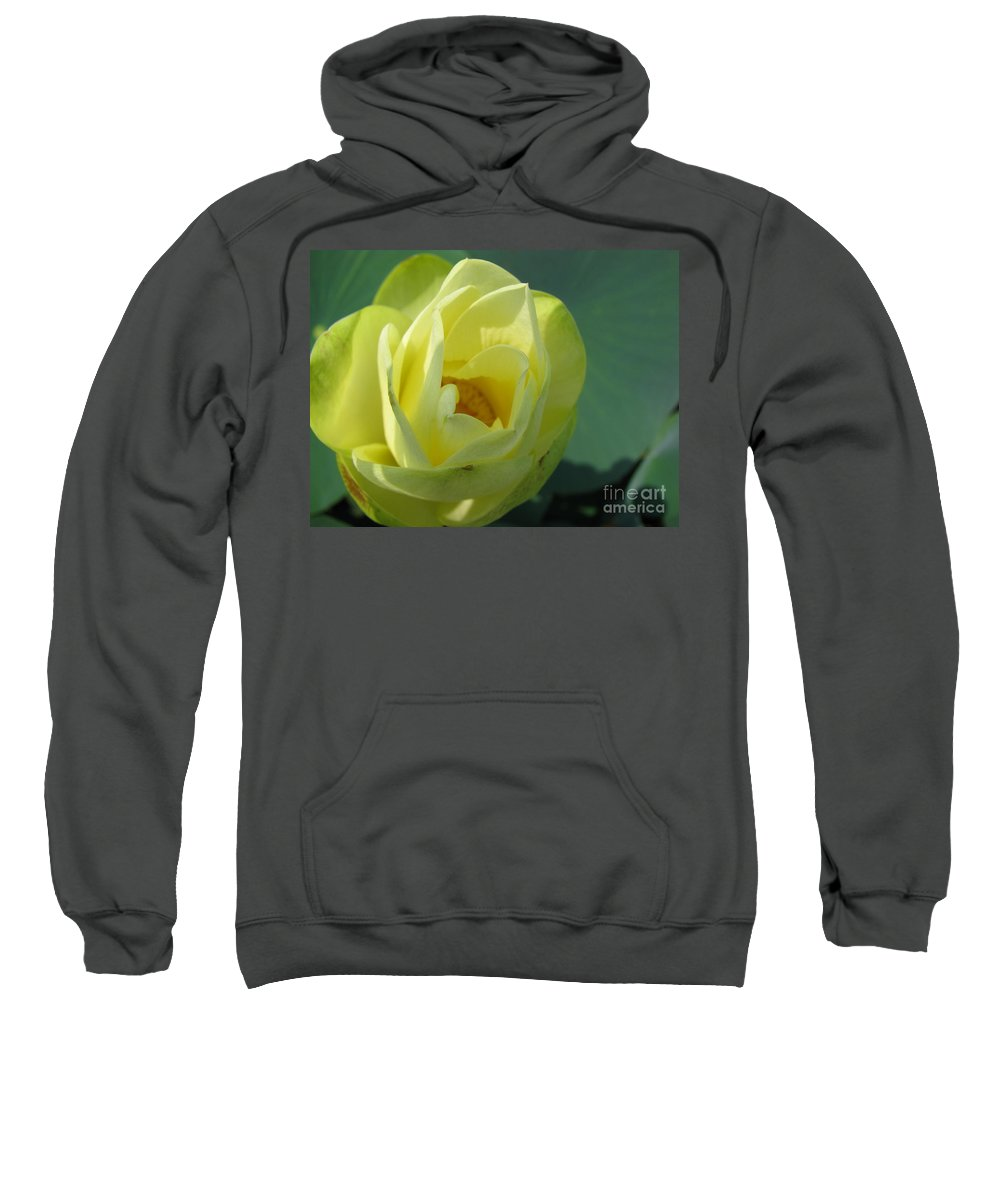 Lotus Sweatshirt featuring the photograph Softly by Amanda Barcon