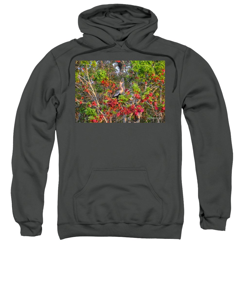 Anhinga Sweatshirt featuring the photograph Song Of The Anhinga by David Lee Thompson