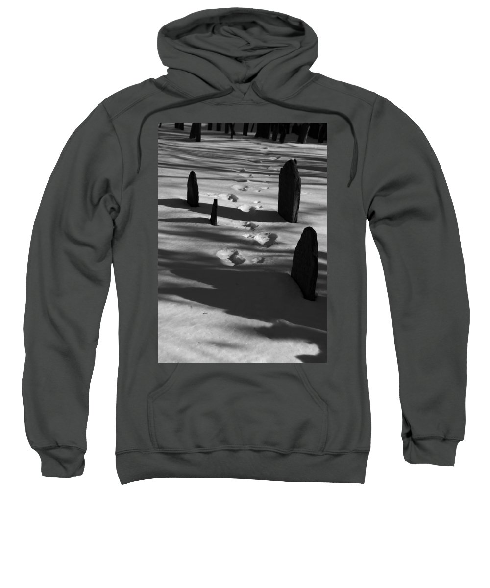 Grave Sweatshirt featuring the photograph South For The Winter by Steven Natanson