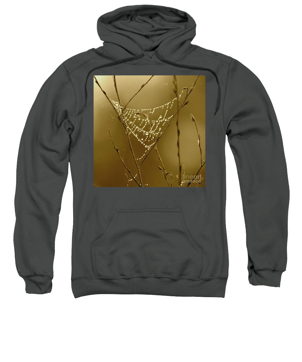 Dewdrops On Spider Web Sweatshirt featuring the photograph Southern Jewels by Carol Groenen