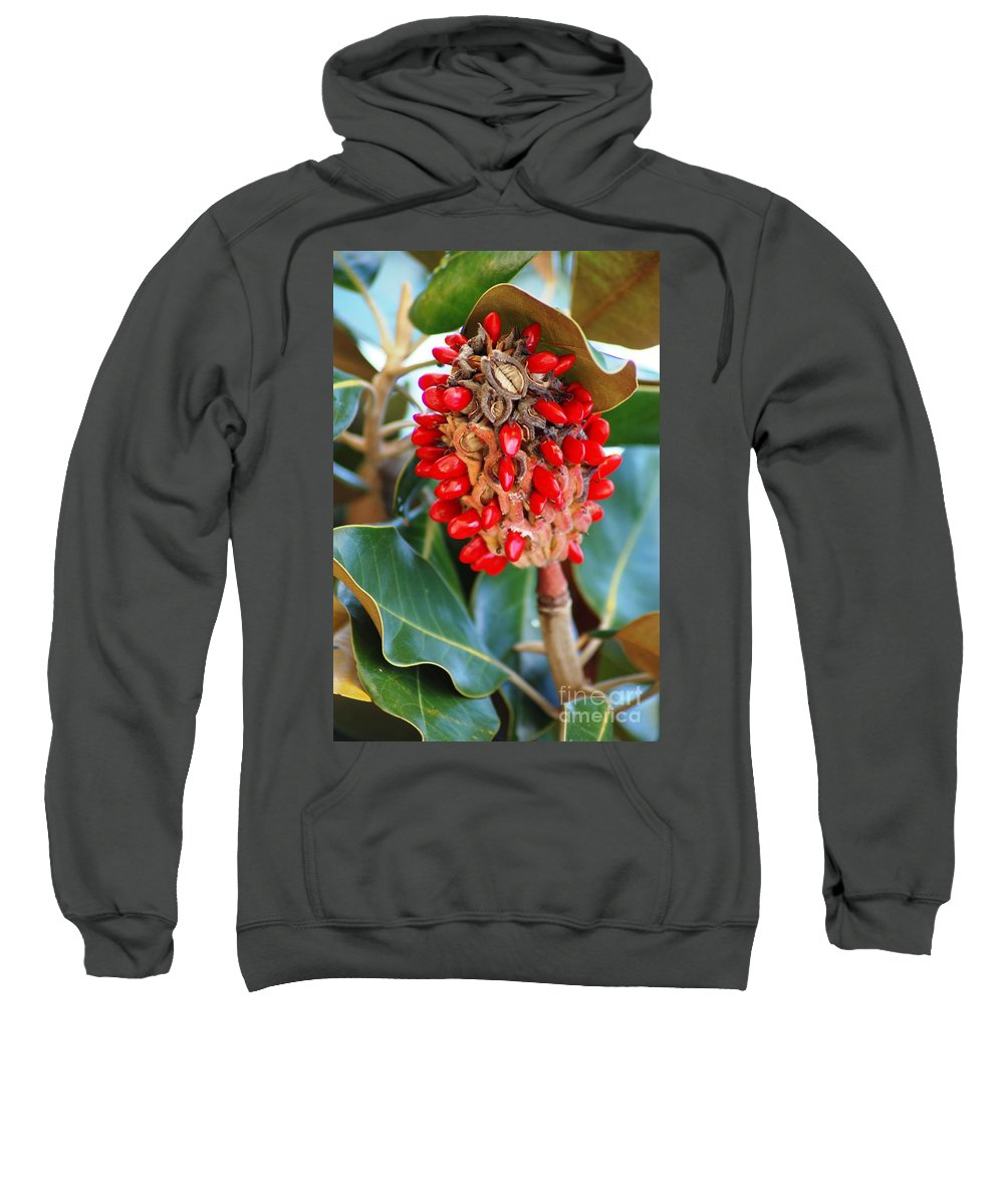 Magnolia Sweatshirt featuring the photograph Southern Magnolia Seedpods by Donna Bentley