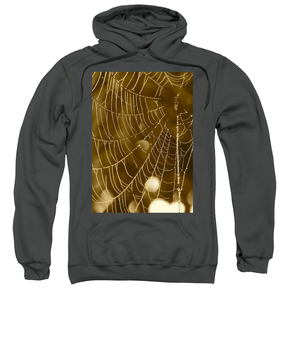 Dewdrops On Spider Web Sweatshirt featuring the photograph Southern Pearls by Carol Groenen