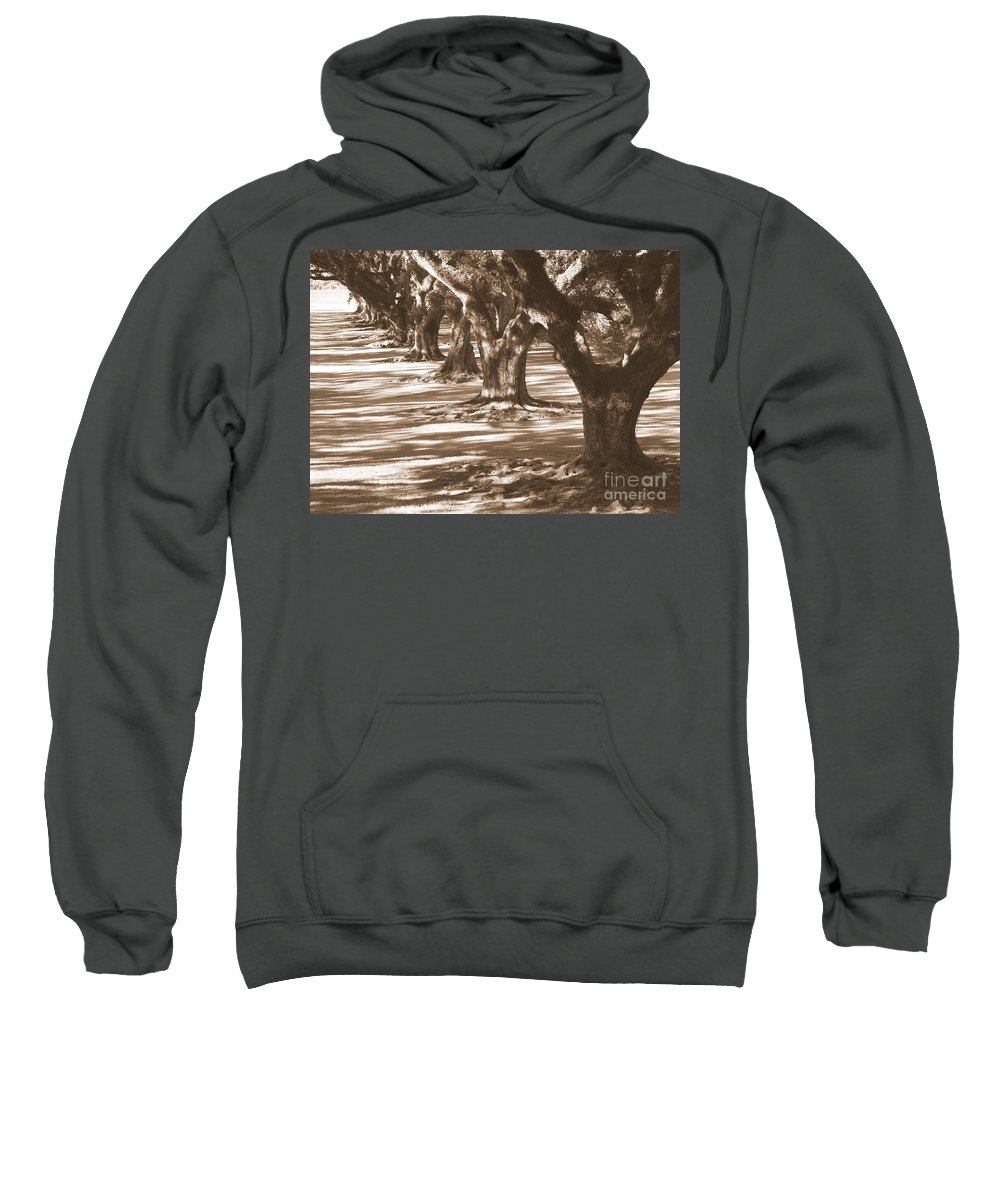 Southern Landscape Sweatshirt featuring the photograph Southern Sunlight On Live Oaks by Carol Groenen