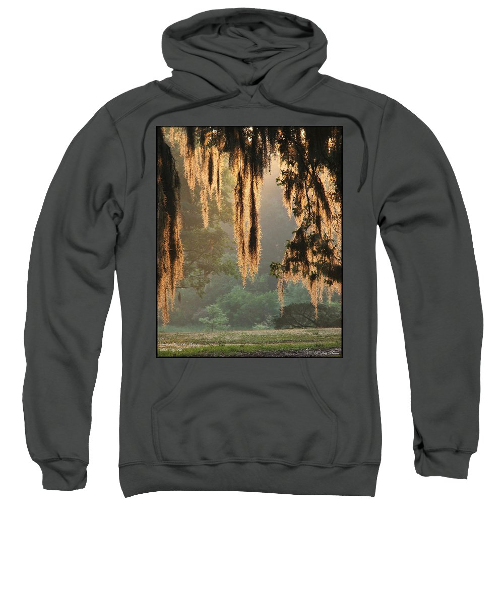 Spanish Moss Sweatshirt featuring the photograph Spanish Moss In The Morning by Robert Meanor