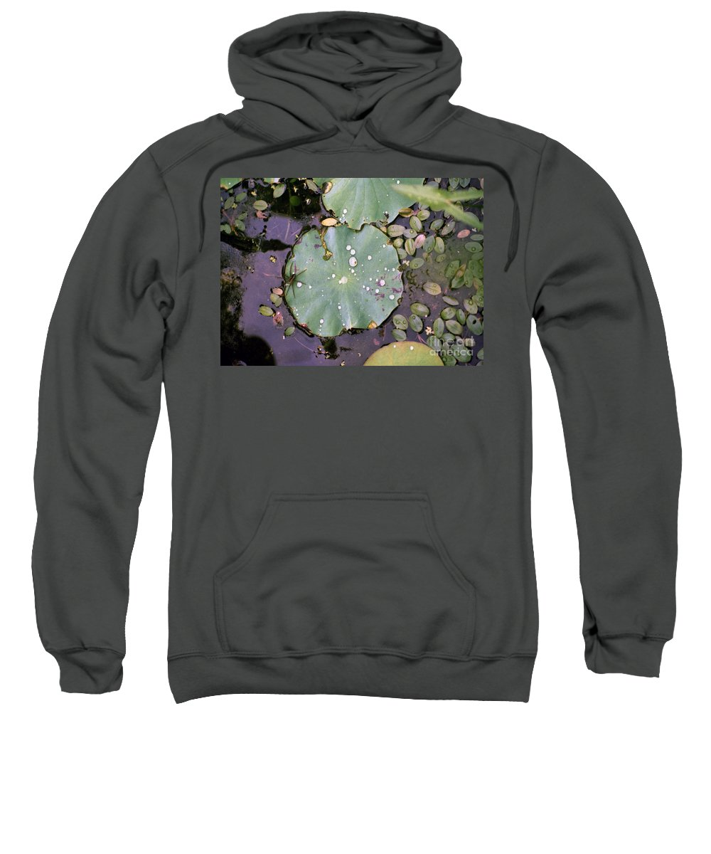Lillypad Sweatshirt featuring the photograph Spider And Lillypad by Richard Rizzo