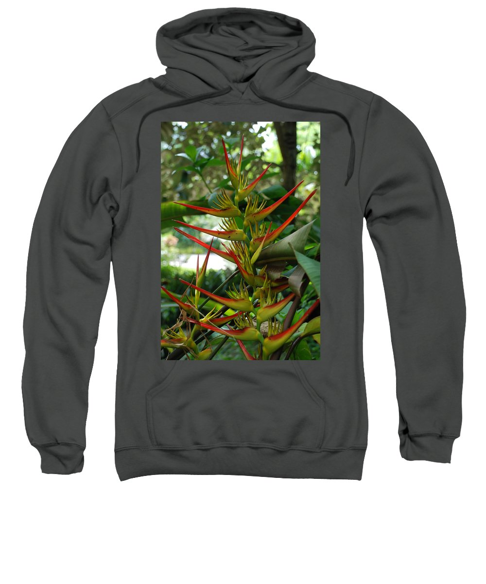 Spike Sweatshirt featuring the photograph Spike Plants by Rob Hans