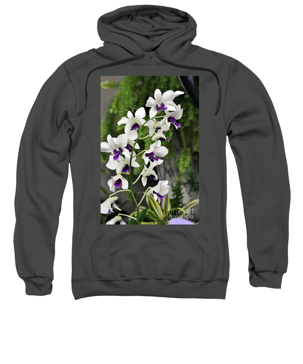 Clay Sweatshirt featuring the photograph Spray by Clayton Bruster