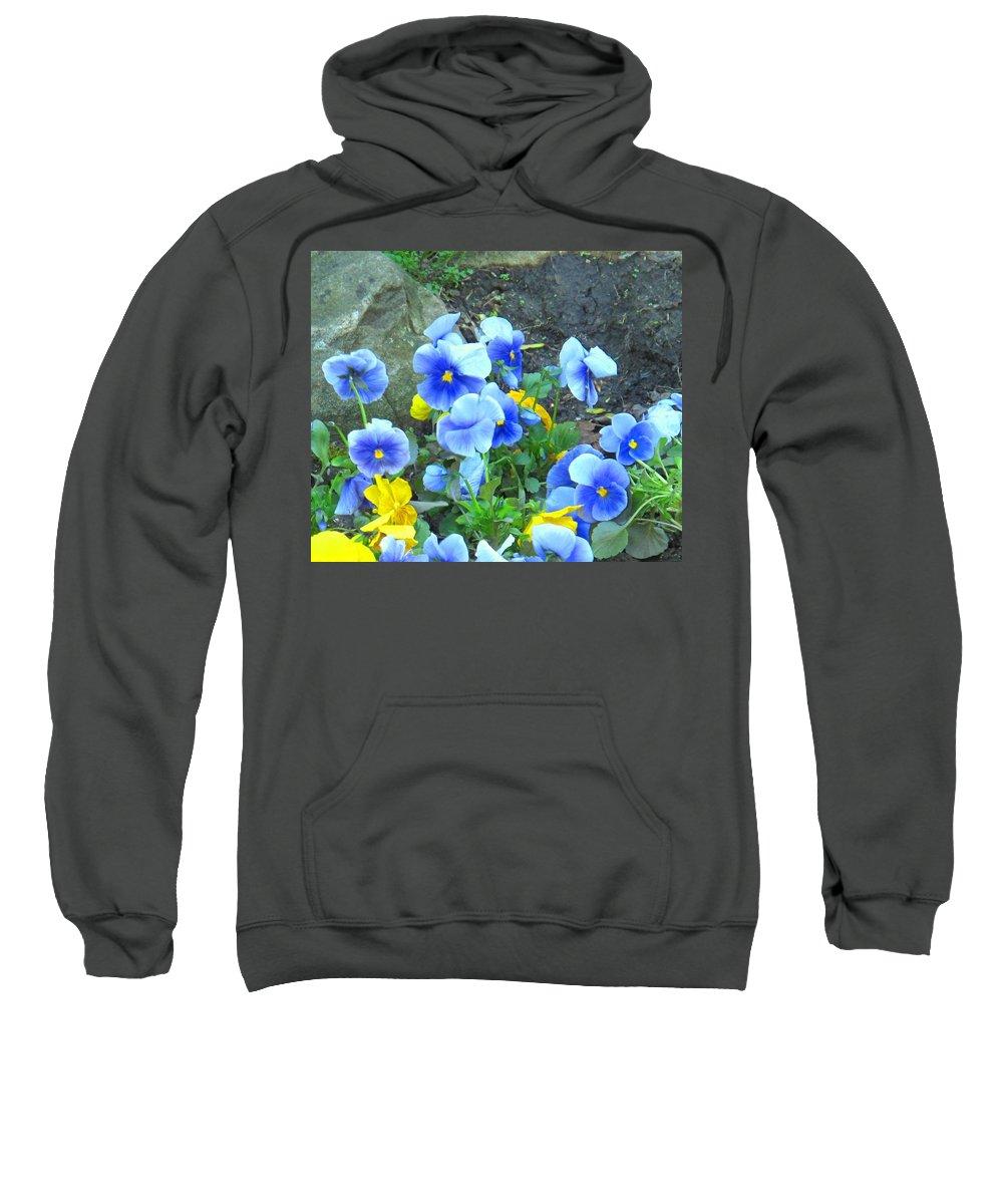 Blue Sweatshirt featuring the photograph Spring Beauties by Ian MacDonald