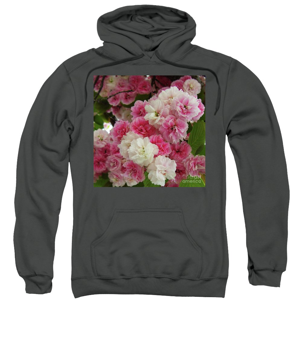 Pink Flowers Sweatshirt featuring the photograph Spring Blossom 3 by Xueling Zou