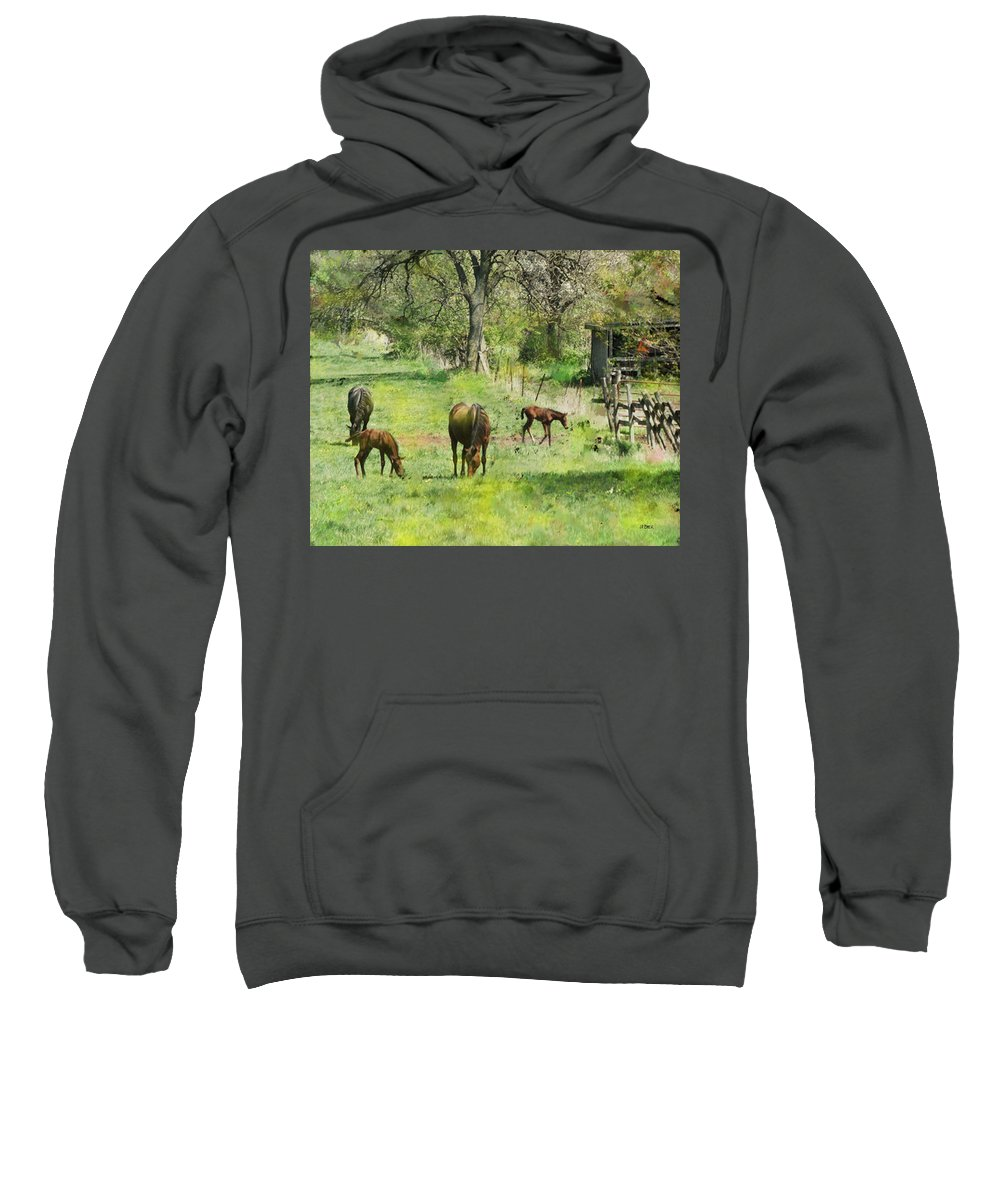 Spring Colts Sweatshirt featuring the digital art Spring Colts by John Beck