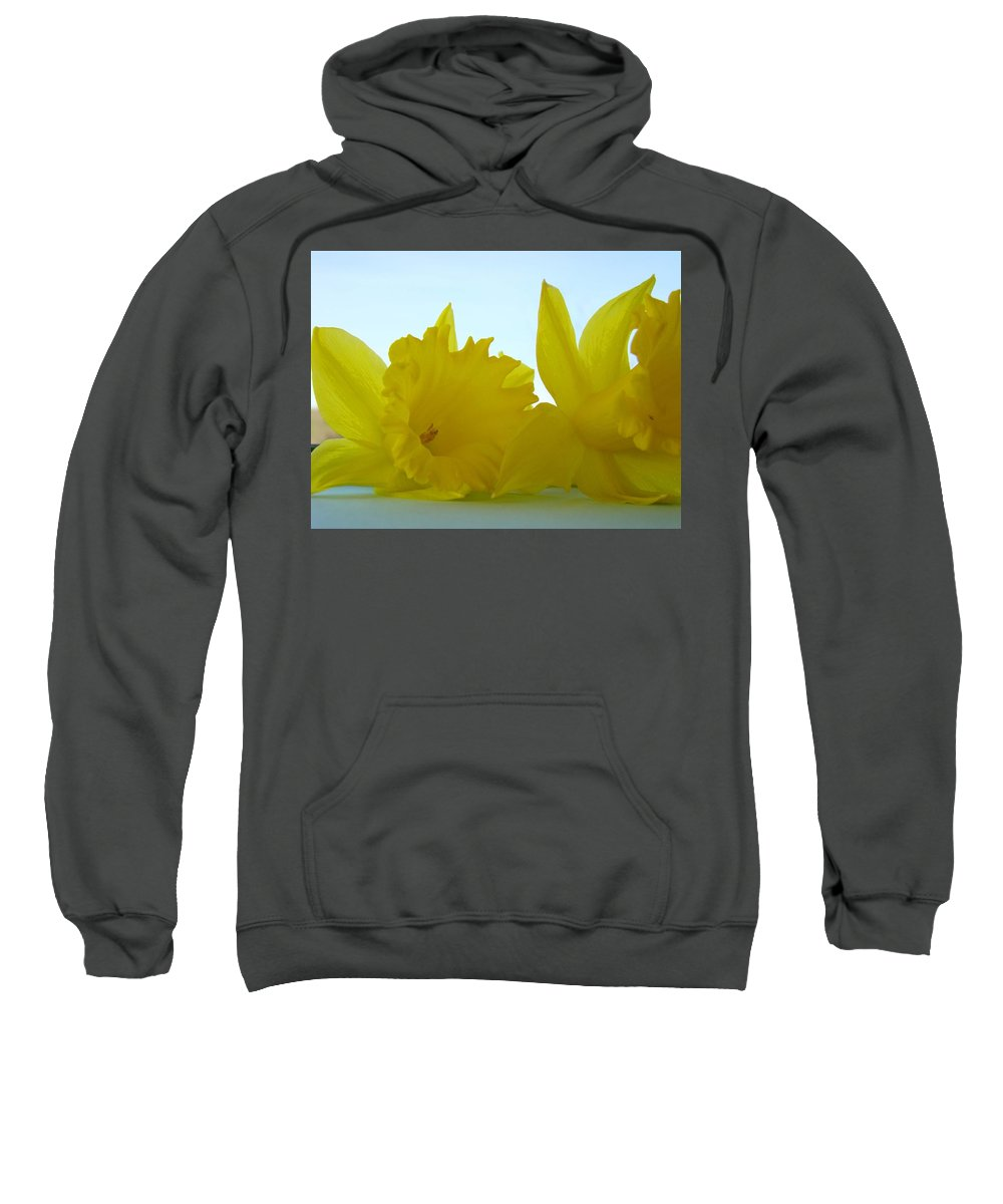 �daffodils Artwork� Sweatshirt featuring the photograph Spring Daffodils Flowers Art Prints Blue Skies by Baslee Troutman