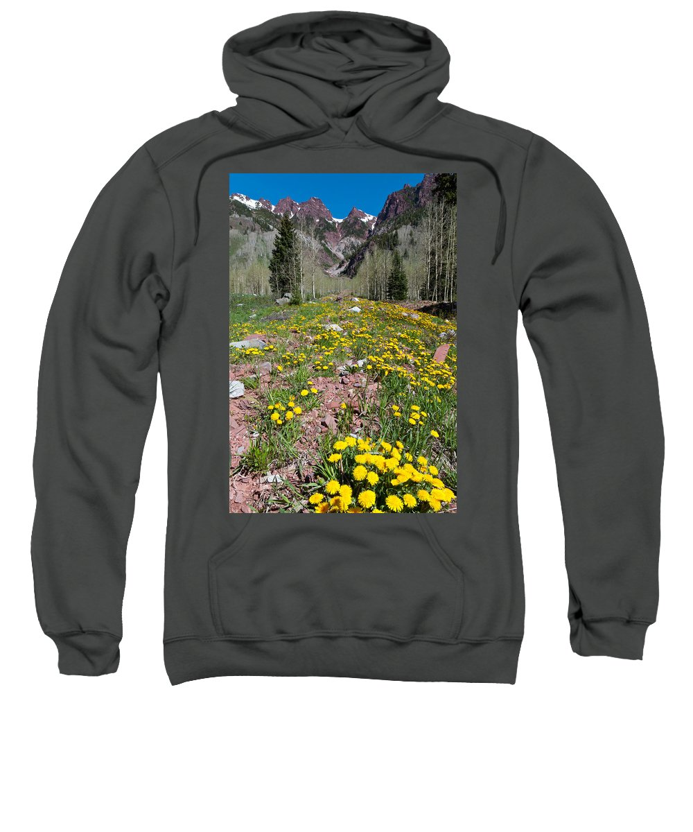 Rocky Mountains Sweatshirt featuring the photograph Spring Dandelion And Mountain Landscape by Cascade Colors