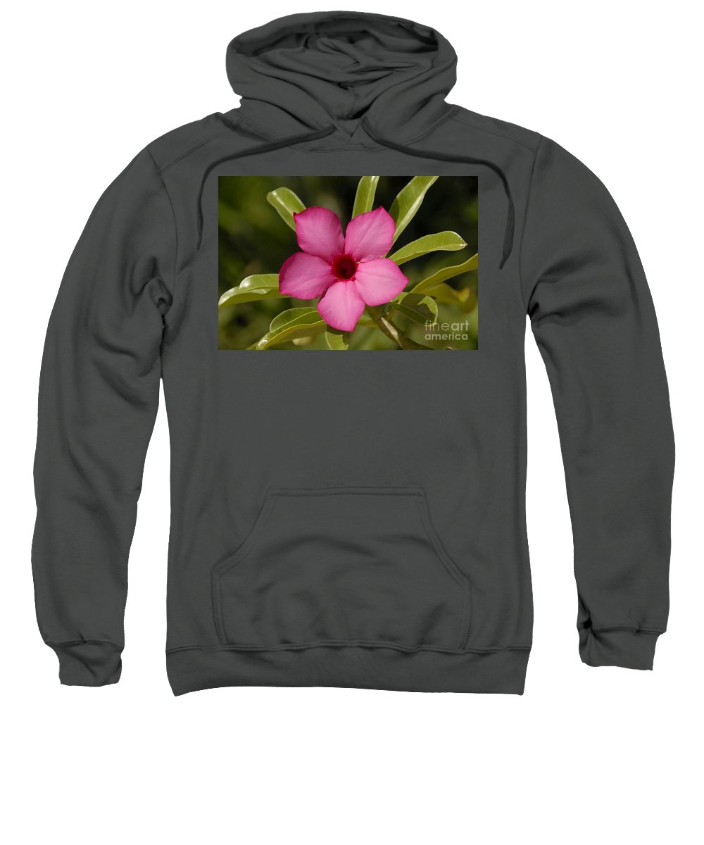 Spring Sweatshirt featuring the photograph Spring by David Lee Thompson