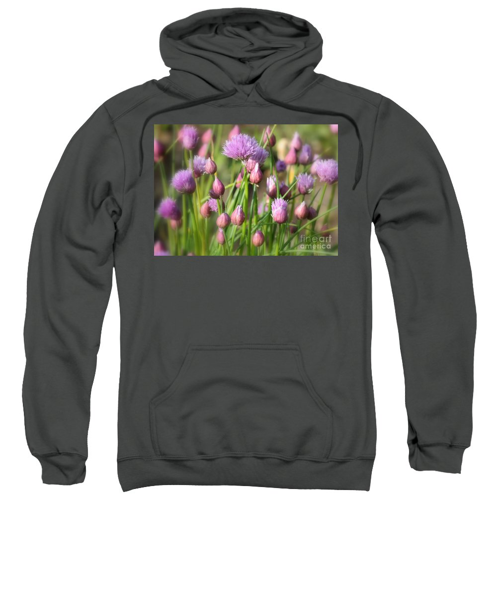 Chive Sweatshirt featuring the photograph Spring Dreams by Carol Groenen