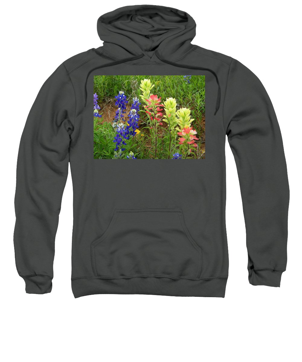 Spring Sweatshirt featuring the photograph Spring Eye Candy by Gale Cochran-Smith