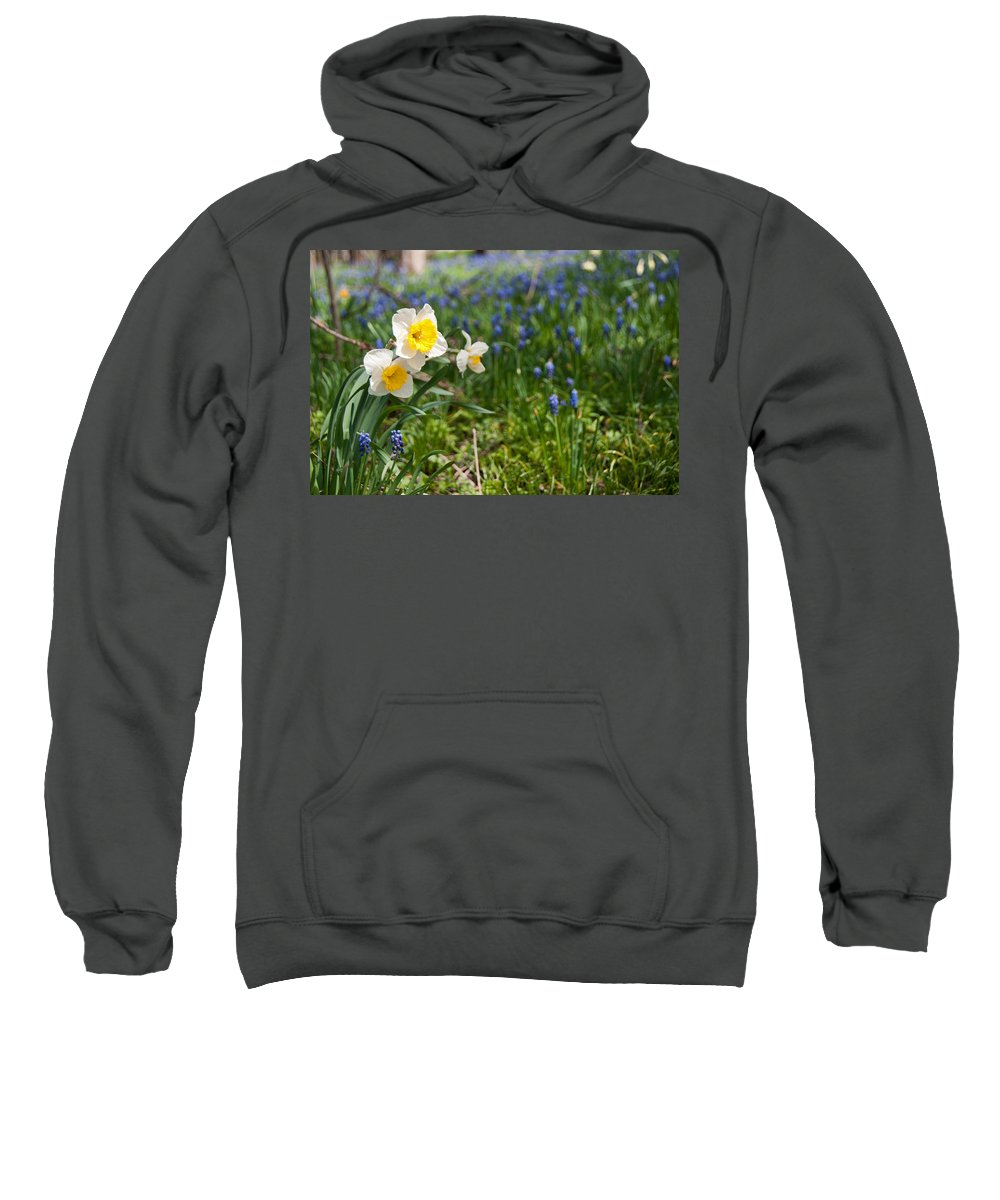 Flowers Sweatshirt featuring the photograph Spring Flowers by David Arment
