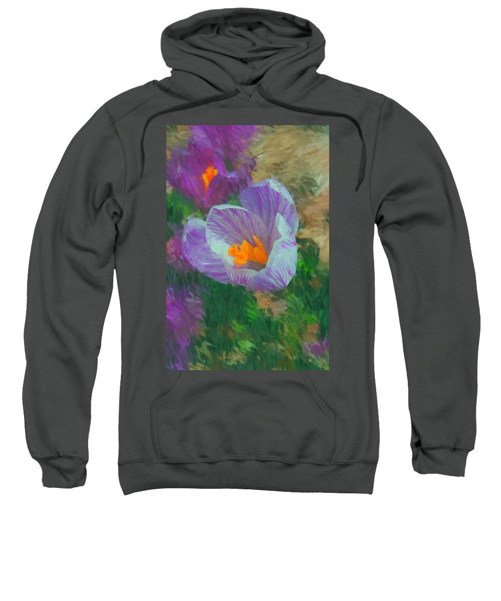 Digital Photography Sweatshirt featuring the digital art Spring Has Sprung by David Lane