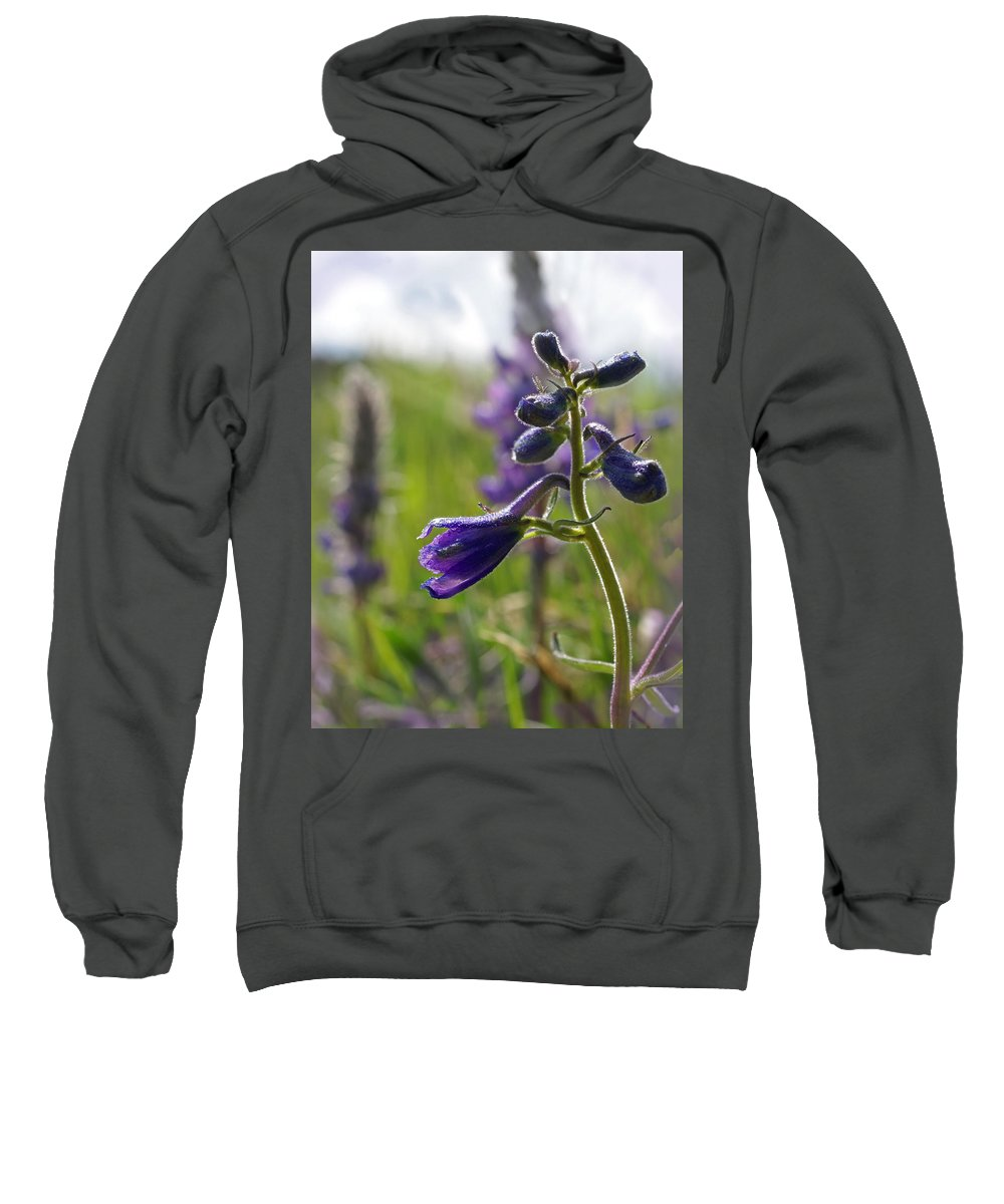 Larkspur Sweatshirt featuring the photograph Spring Larkspur by Heather Coen