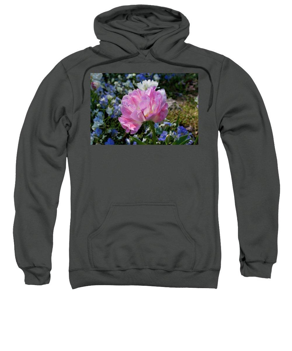 Flower Sweatshirt featuring the photograph Spring Petals by Julia McHugh