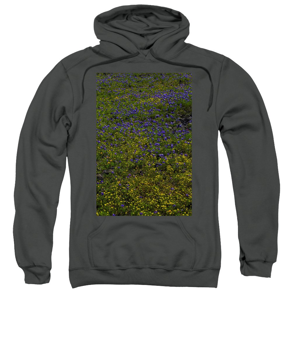 Wildflowers Sweatshirt featuring the photograph Spring Wildflowers by Garry Gay