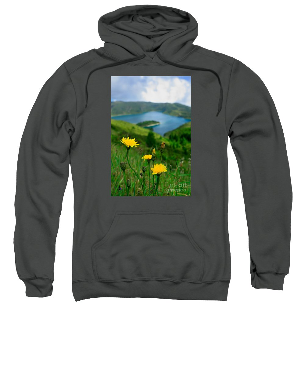 Caldera Sweatshirt featuring the photograph Springtime In Fogo Crater by Gaspar Avila