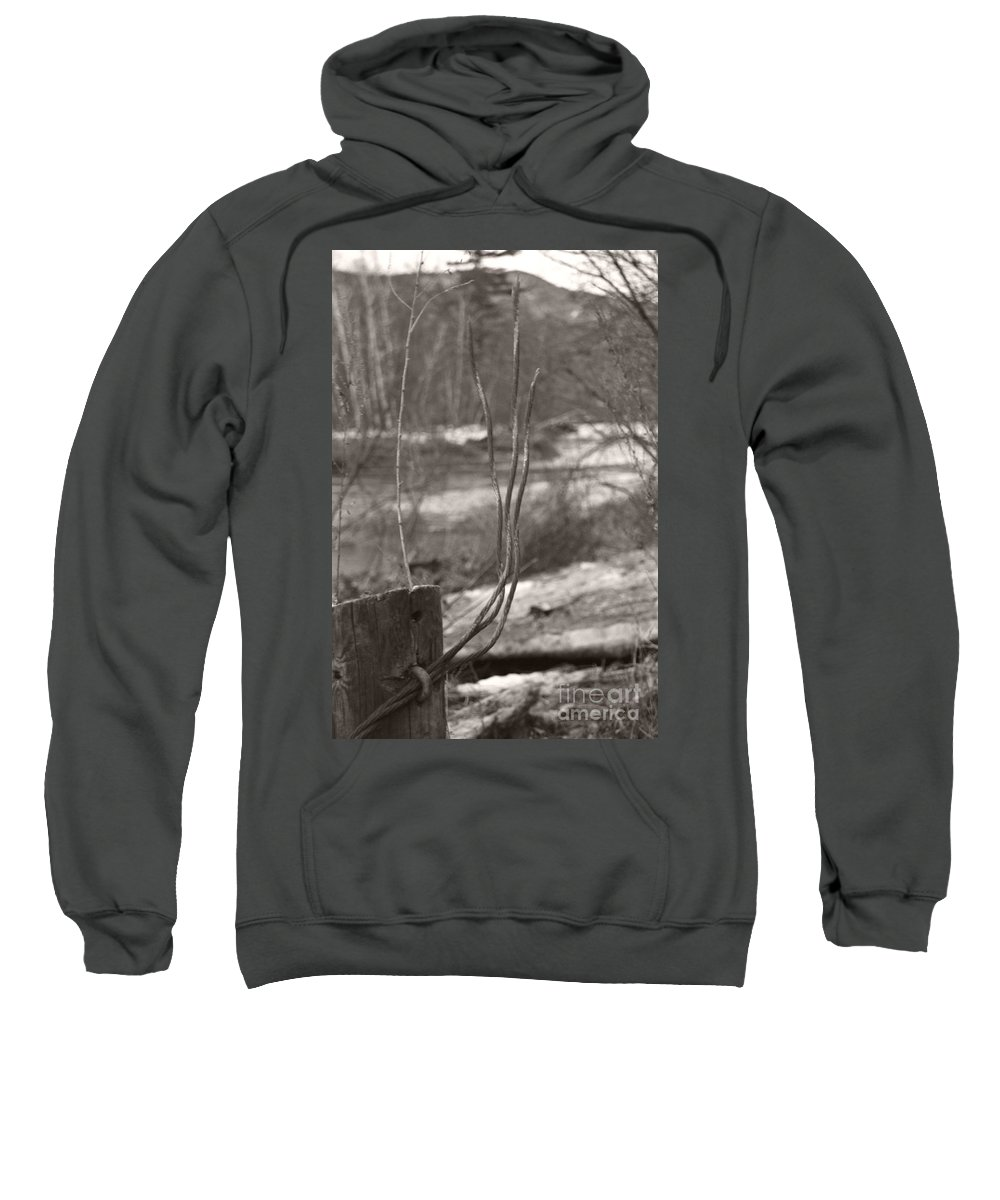 Sweatshirt featuring the photograph Sprouting by Heather Kirk