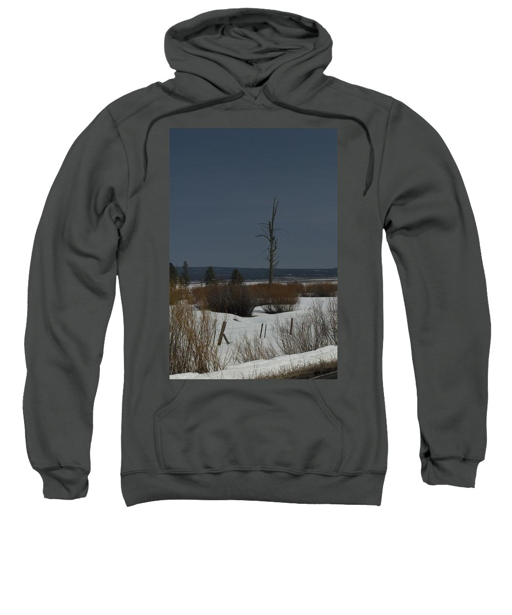 Dead Tree Sweatshirt featuring the photograph Standing Tall by Sara Stevenson