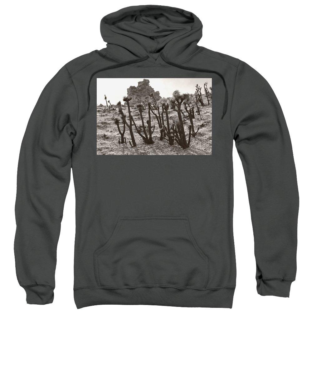 Sweatshirt featuring the photograph Star Trek Joshua Trees by Heather Kirk