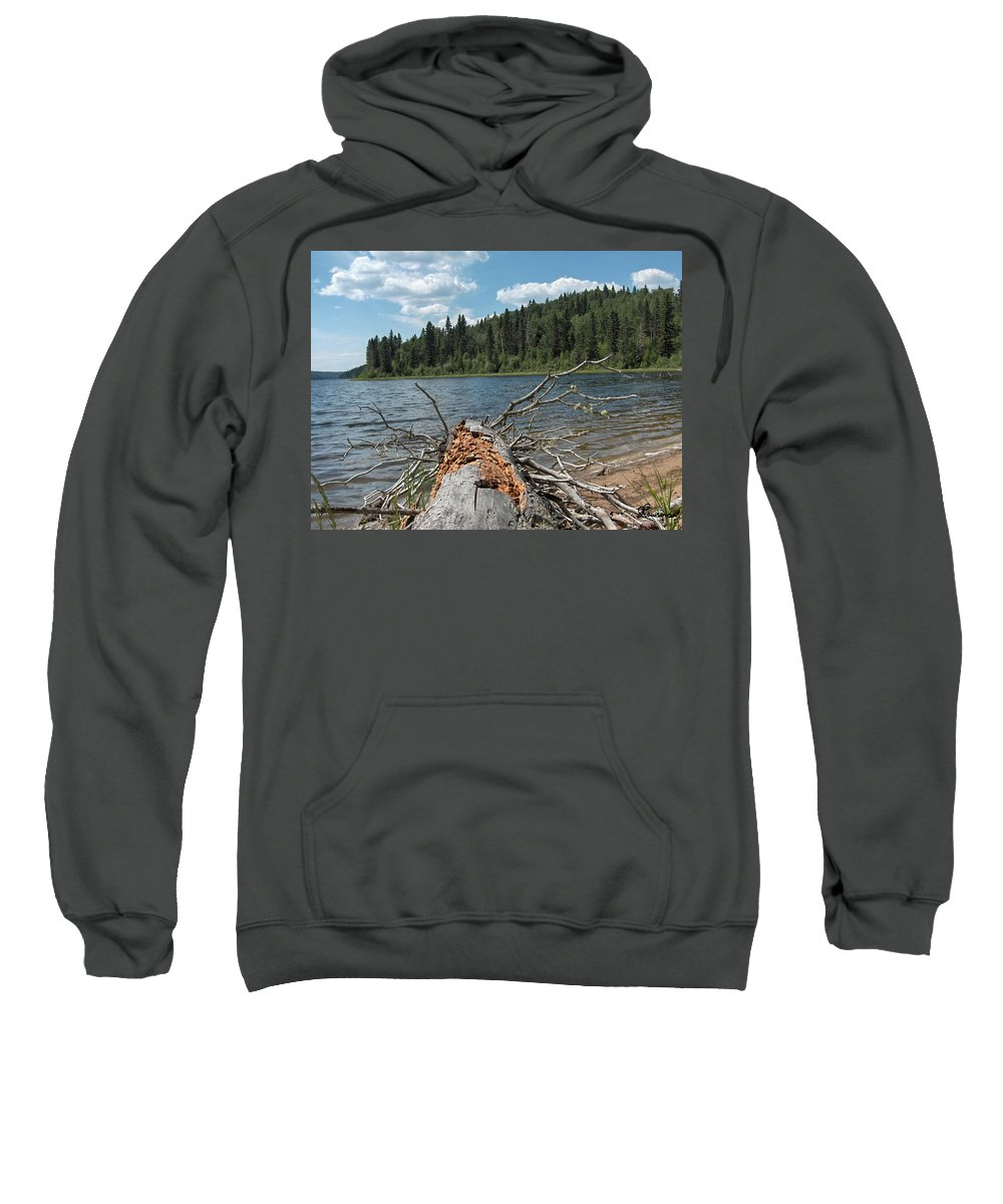 Water Lake Scenery Trees Wood Forest Driftwood Branches Shore Beach Sweatshirt featuring the photograph Steepbanks Lake The Fallen by Andrea Lawrence