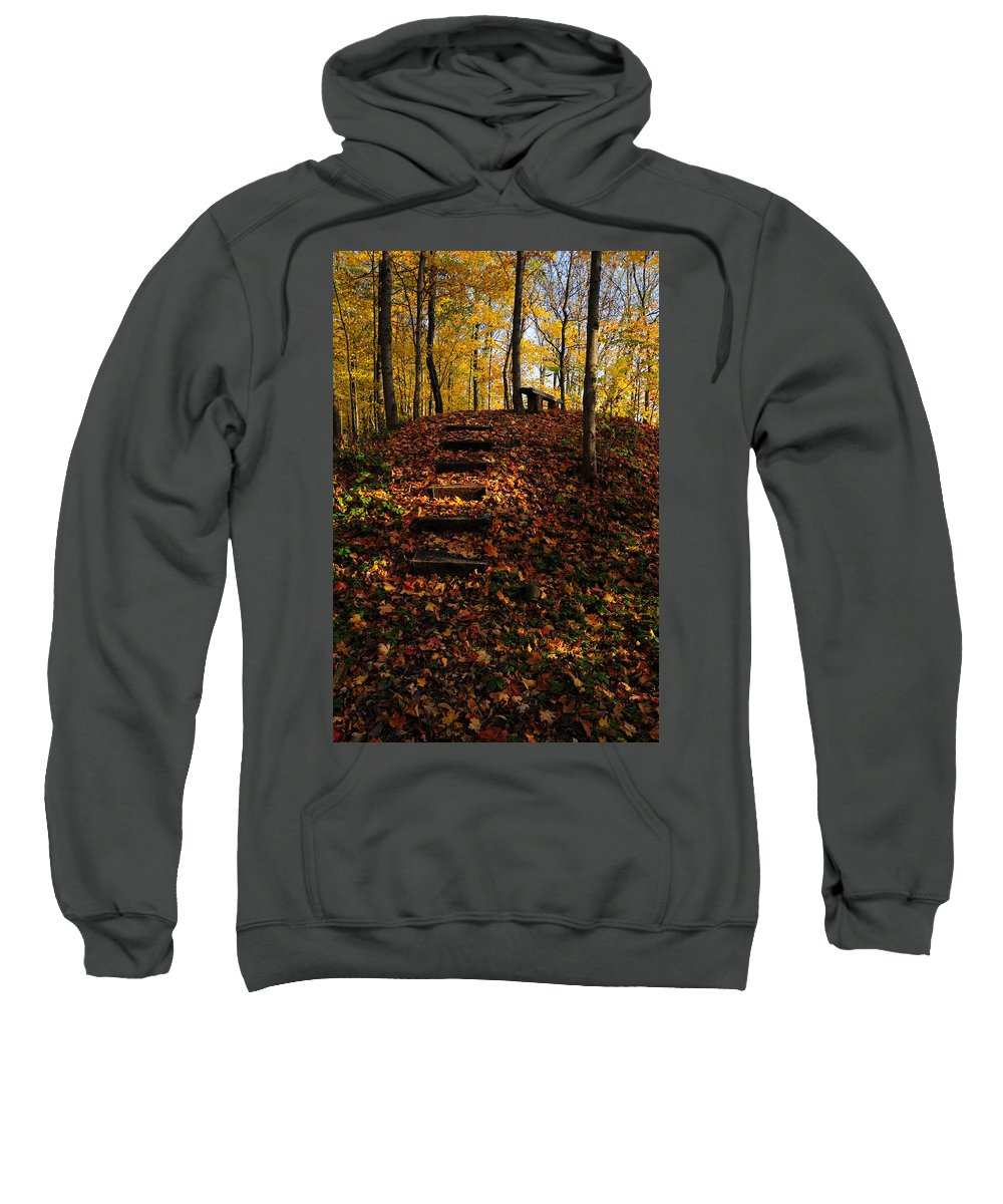 Steps Sweatshirt featuring the photograph Steps To Bench by David Arment