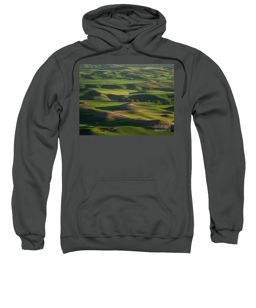 Barns Sweatshirt featuring the photograph Steptoe Butte 4 by Tracy Knauer