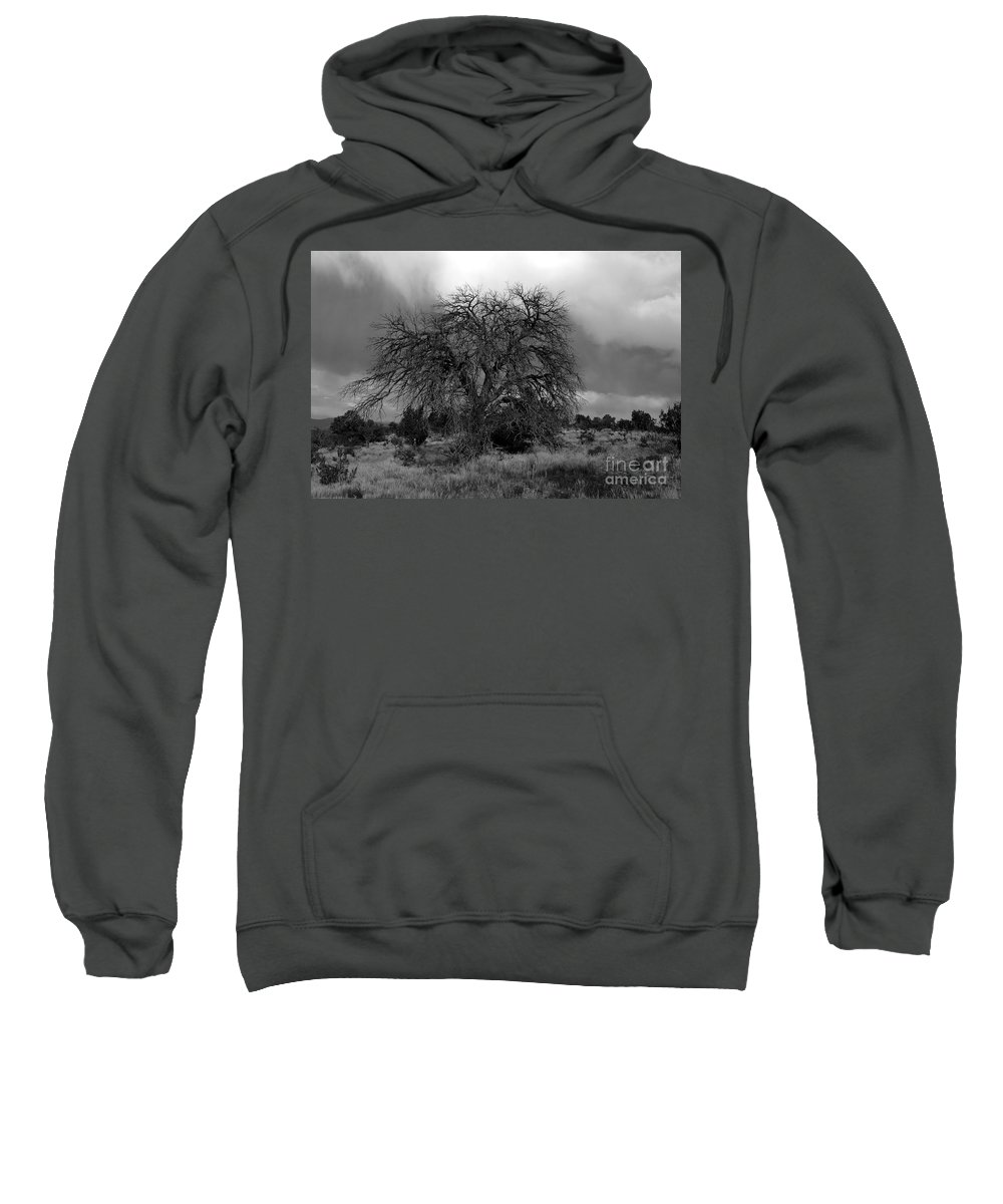 Storm Sweatshirt featuring the photograph Storm Tree by David Lee Thompson