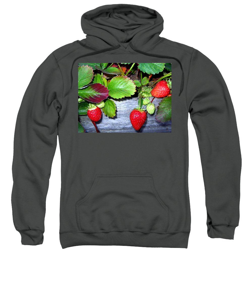 Strawberries Sweatshirt featuring the photograph Strawberries by Will Borden
