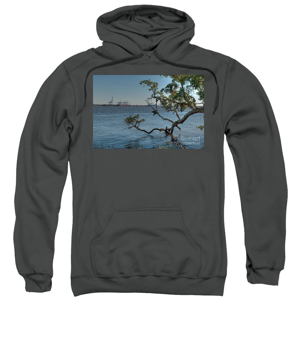 Daniel Island Sweatshirt featuring the photograph Stretching His Limbs by Dale Powell