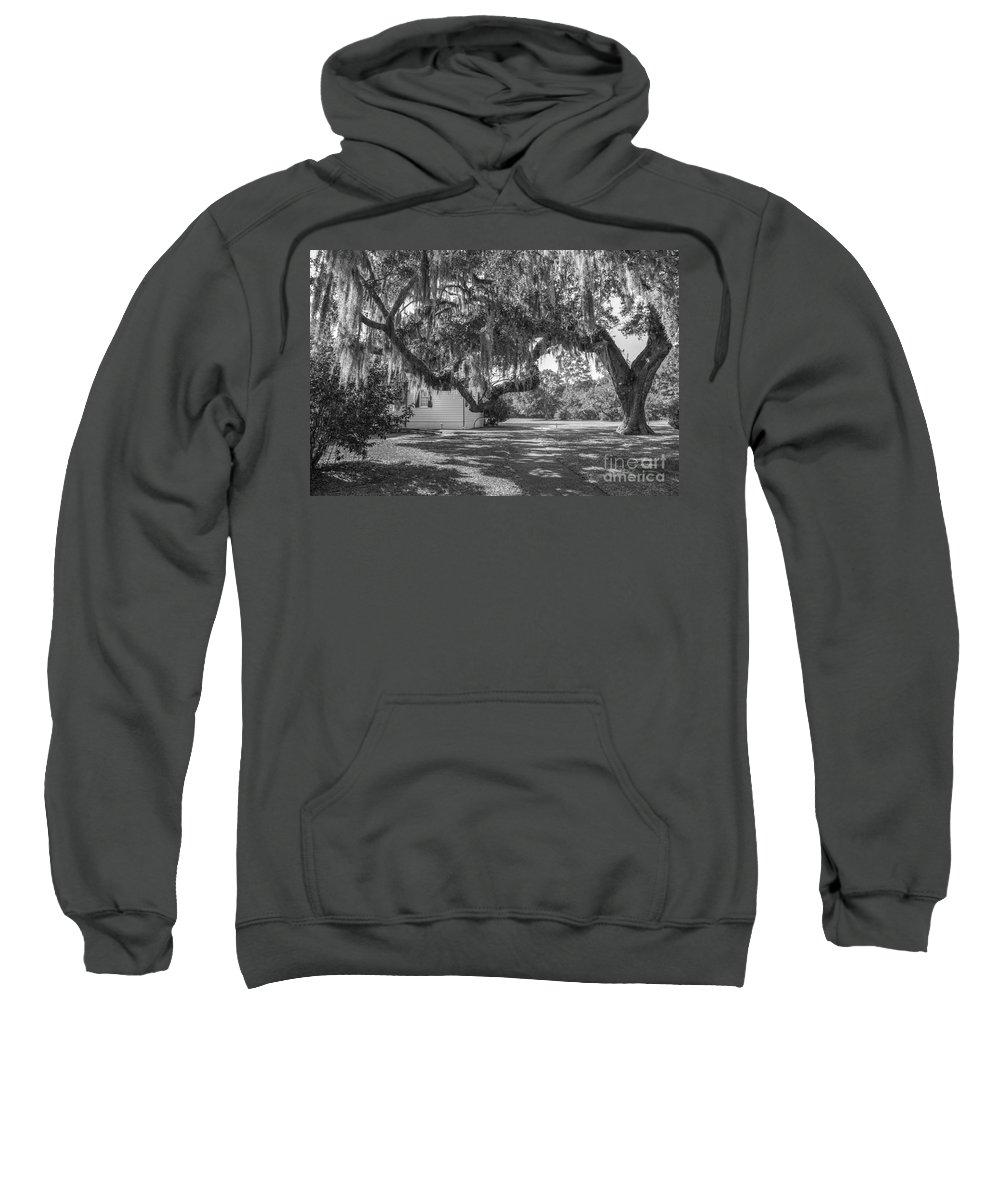 Charles Pinckney Sweatshirt featuring the photograph Stretching My Limbs by Dale Powell